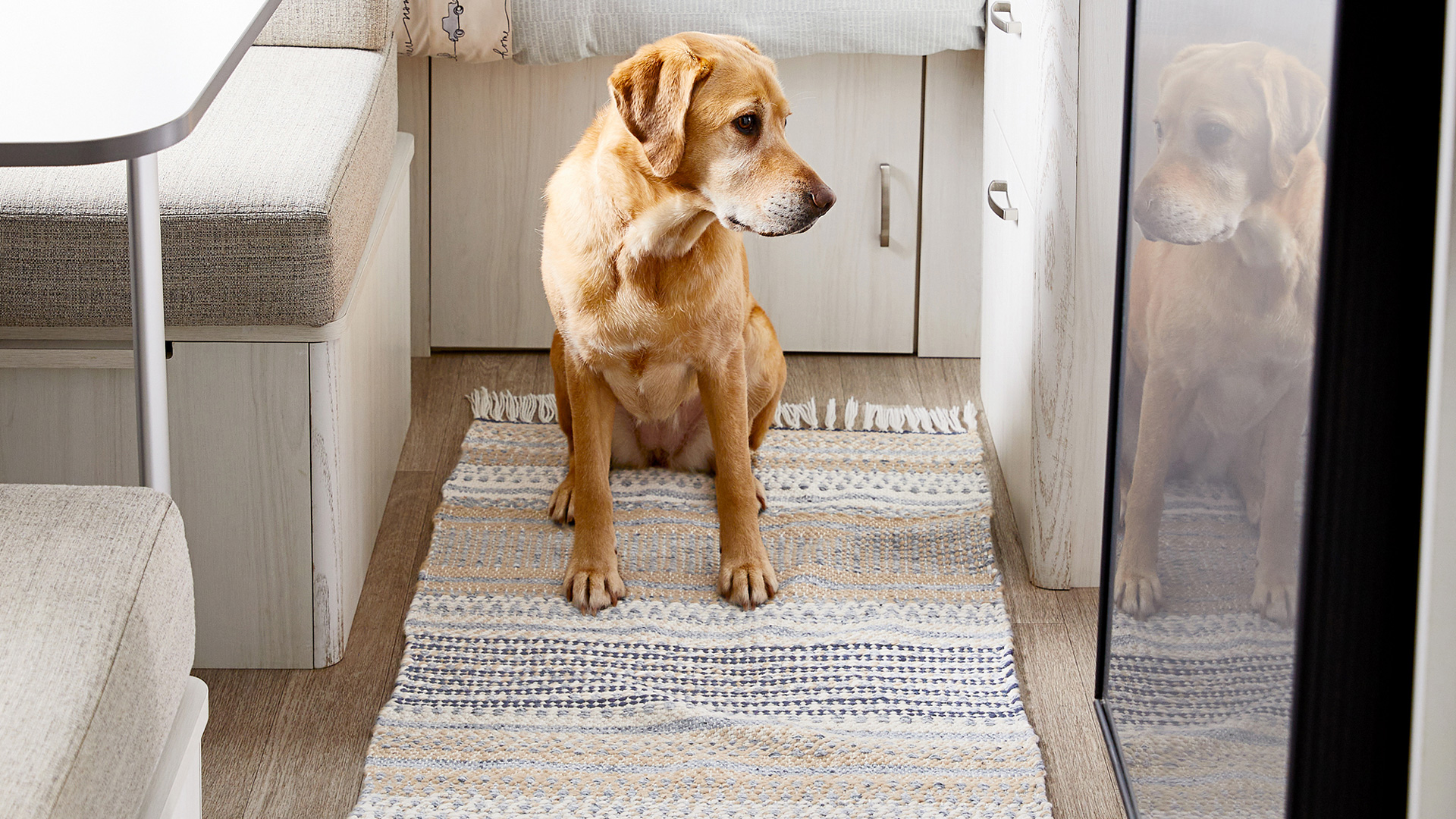 Airstream and Pottery Barn Pacifica Rug