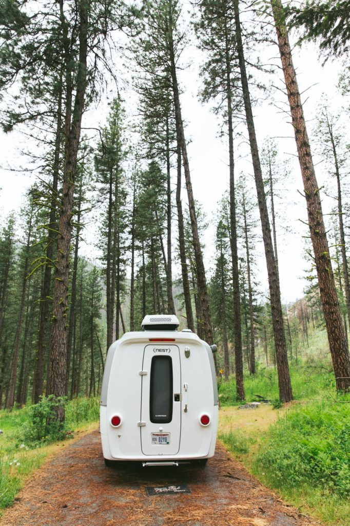 nest by airstream rear door and window in woods on driving trail camping