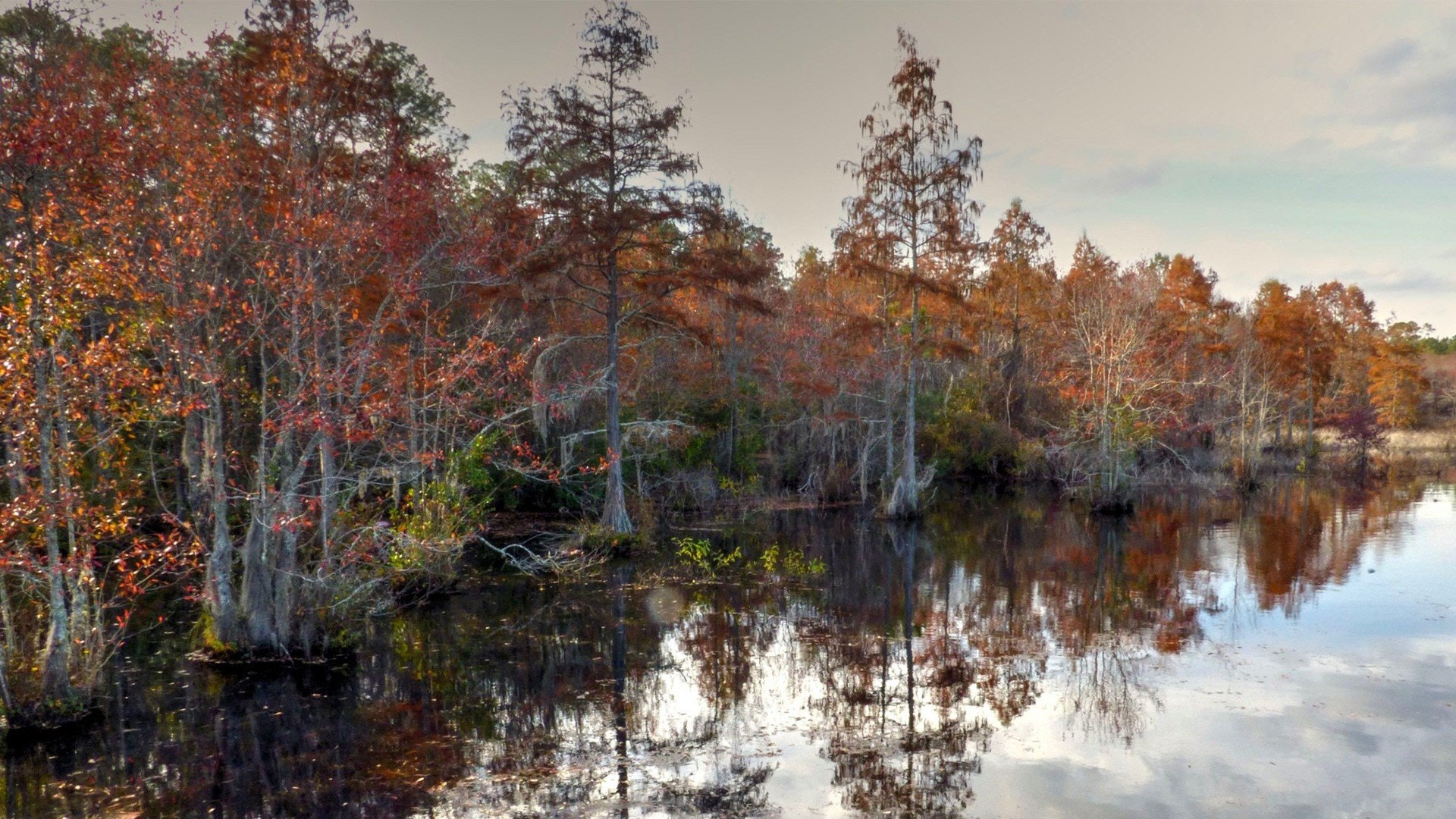 The Best Southeast Fall 2018 Camping According to Airstreamers