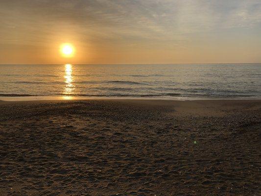 edisto-beach-state-park (1)