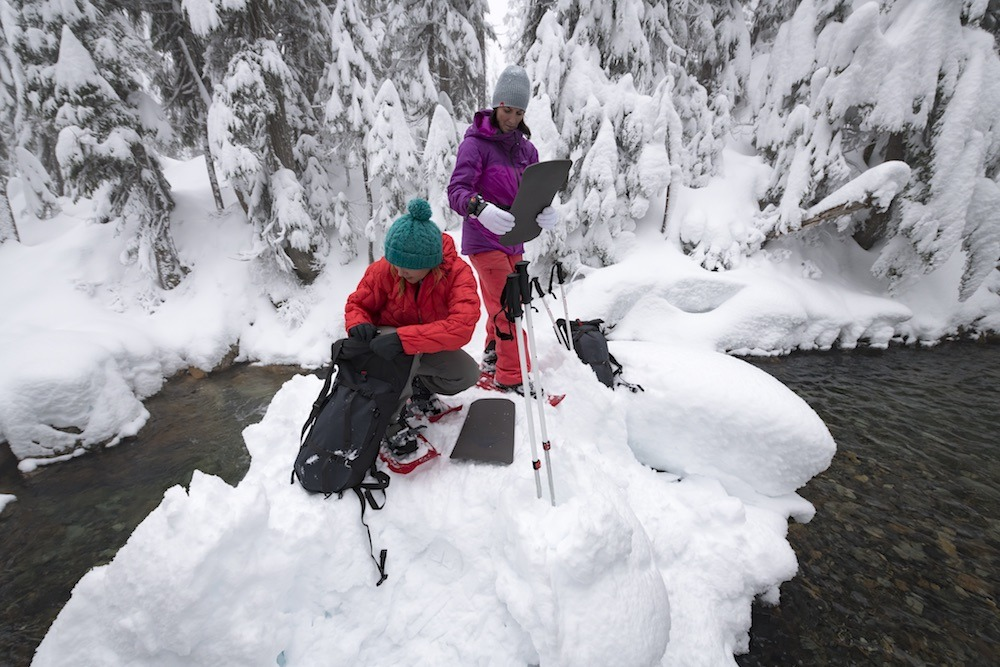 Exploring Snow
