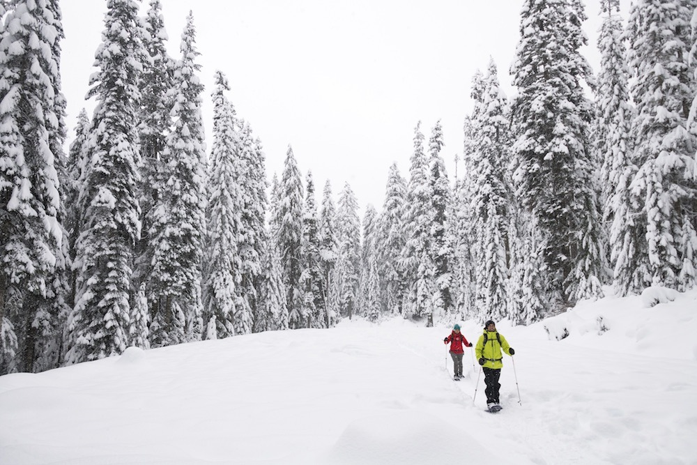 Traveling in Snow