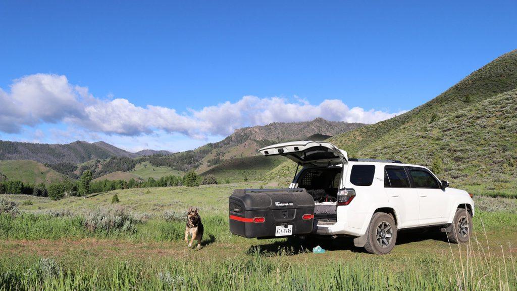 Cass-Beach-Ambassador-dog-SUV-adventure