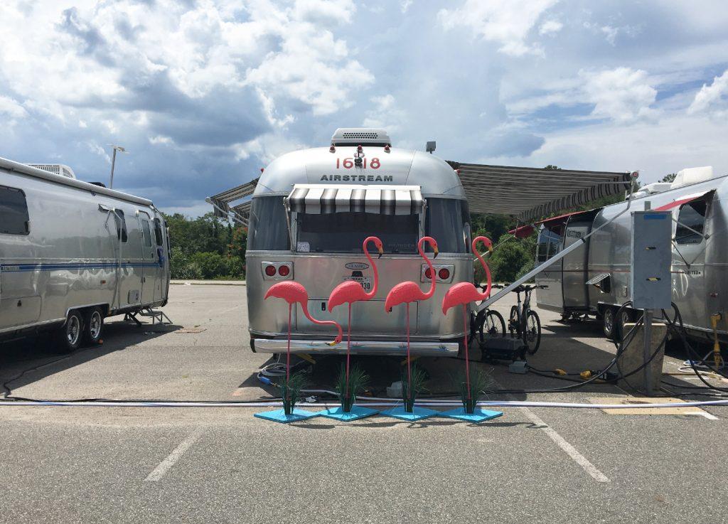 Flamingos-at-Airstream-Campsite-3