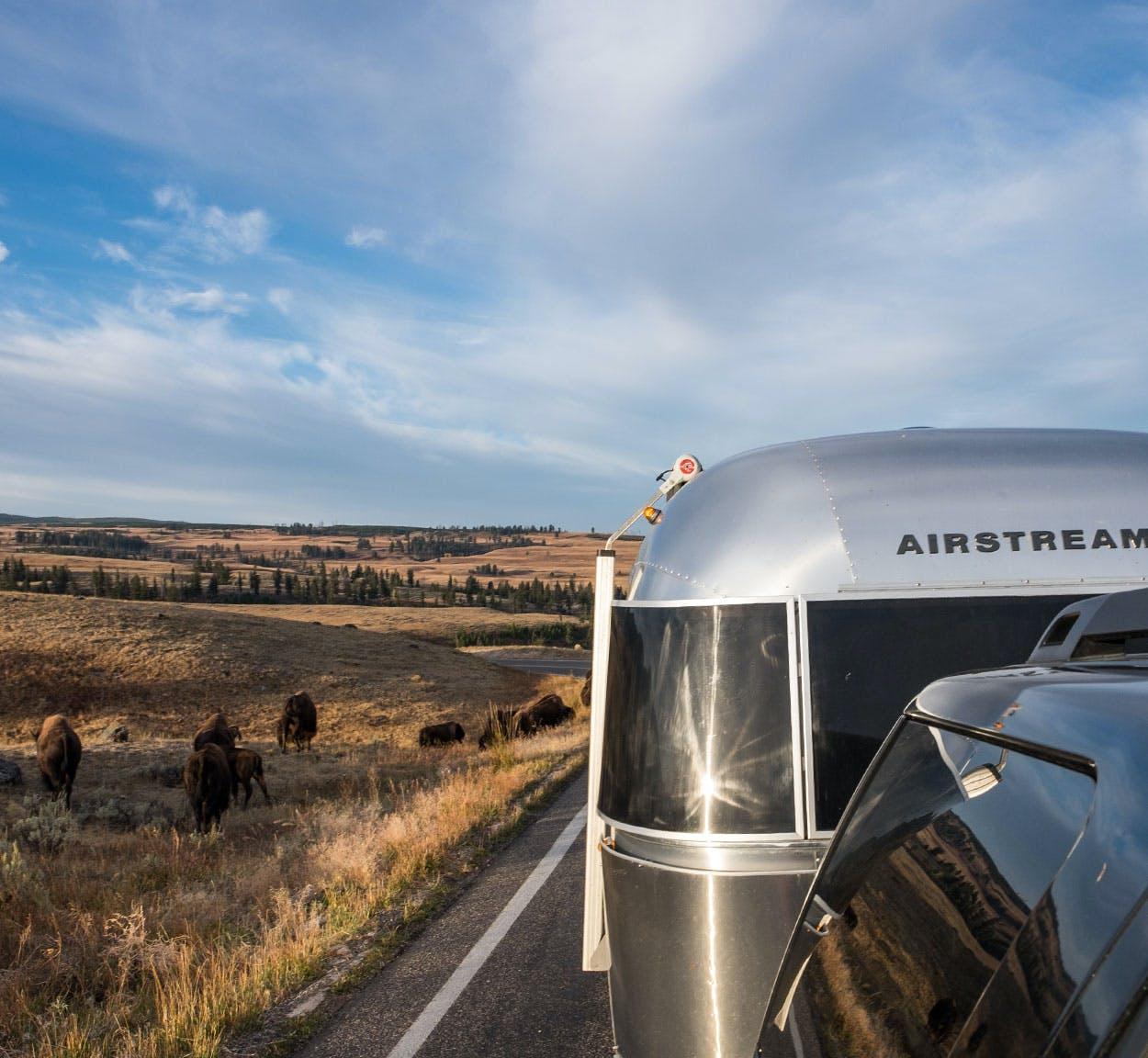Airstream Yellowstone National Park