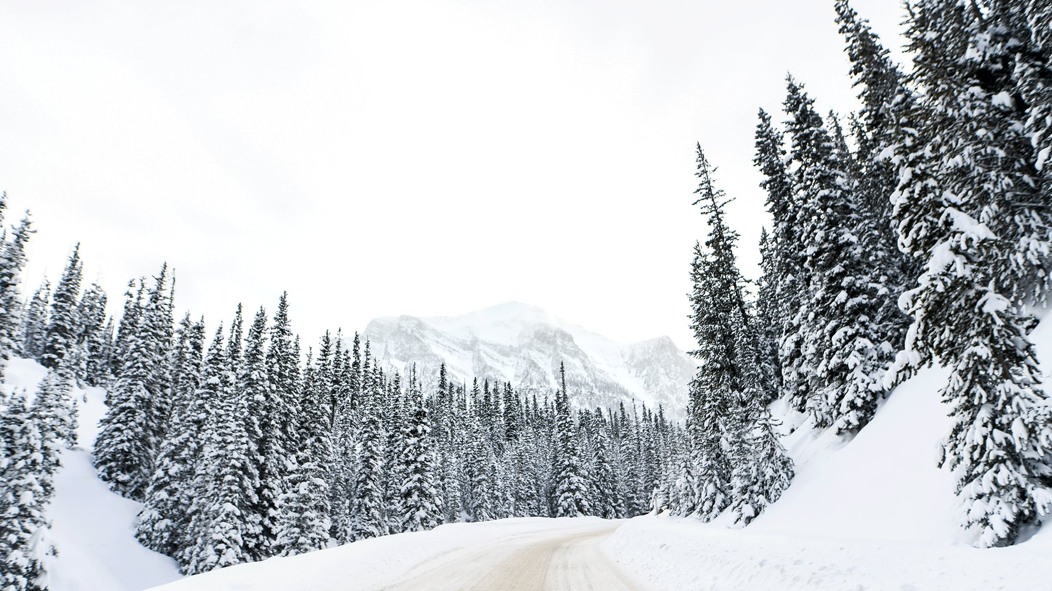 WinterShot