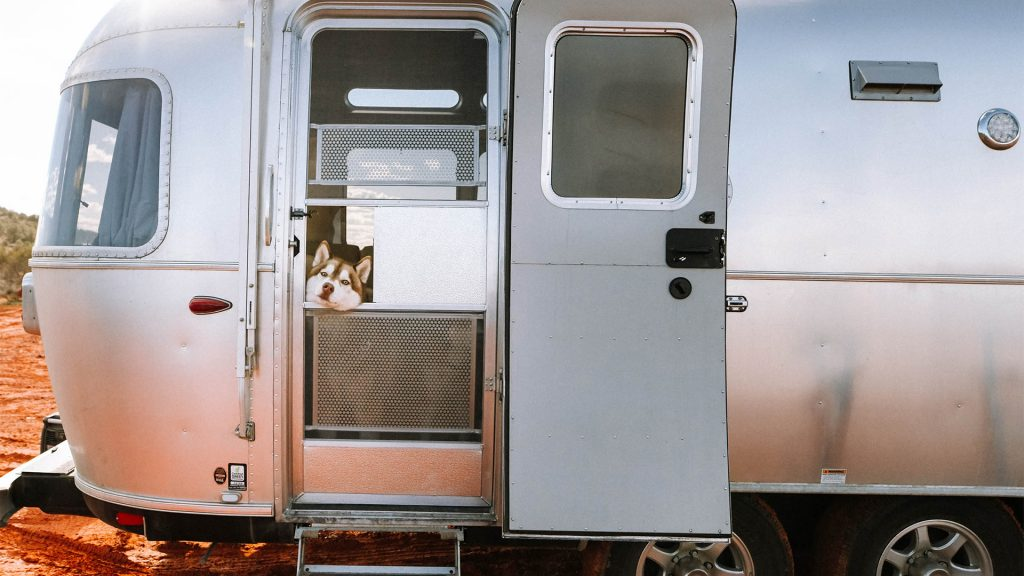 Airstream-Travel-Trailer-with-dog-looking-through-window