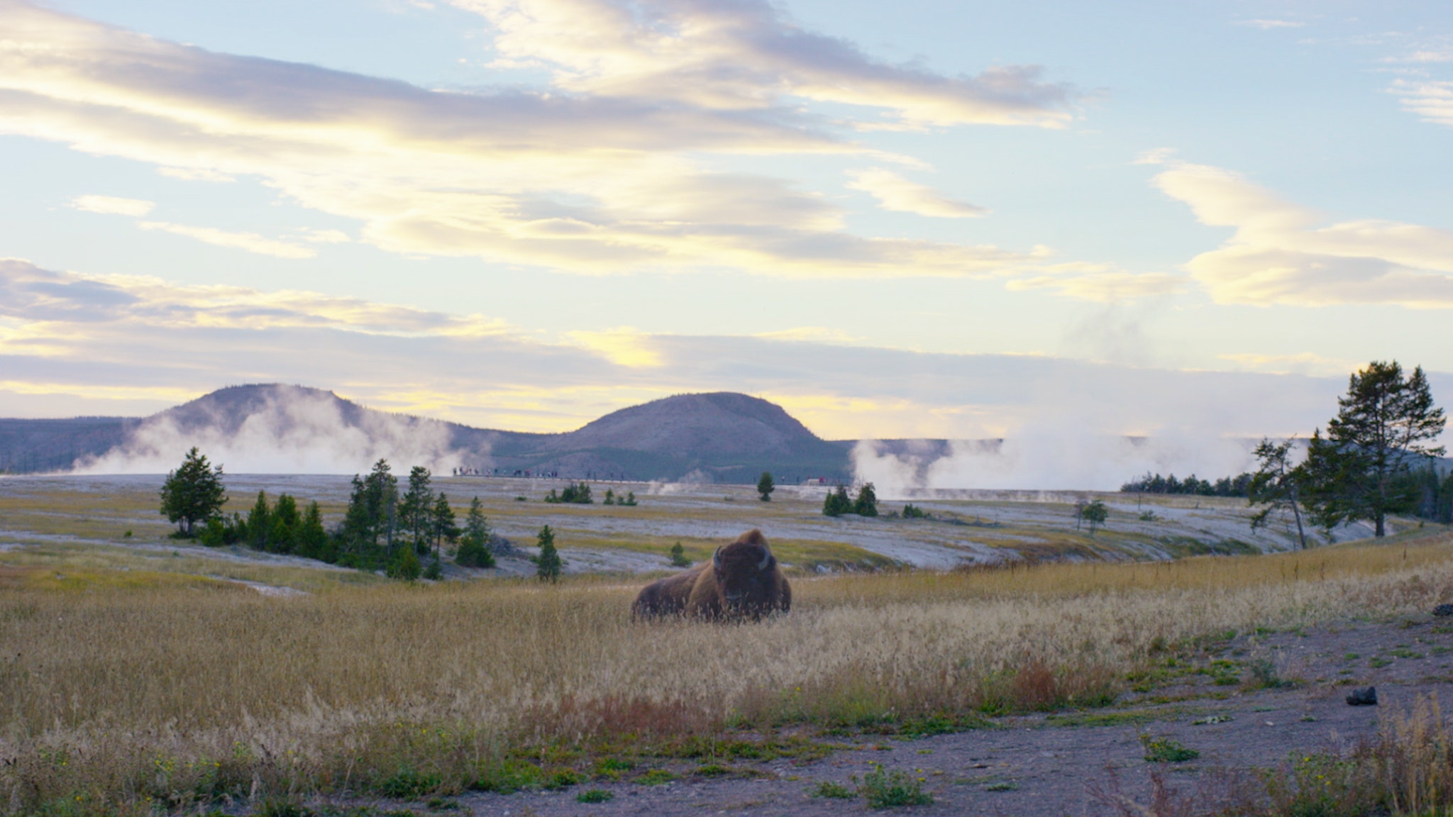 Airstream-Best-Yellowstone-Camping-Header
