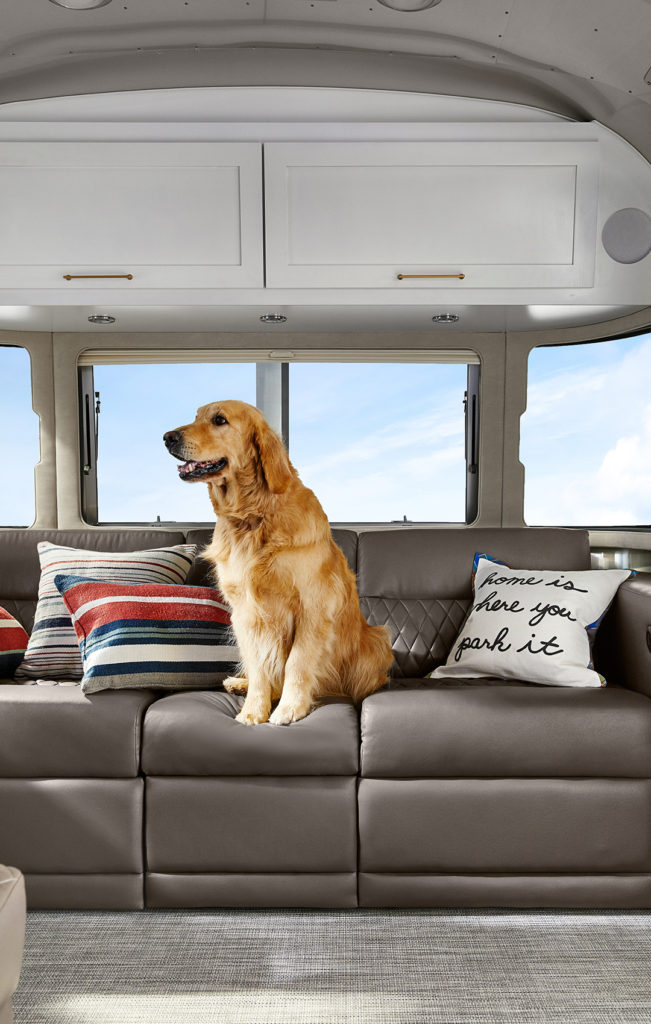 Airstream-and-Pottery-Barn-Pillows-with-Dog