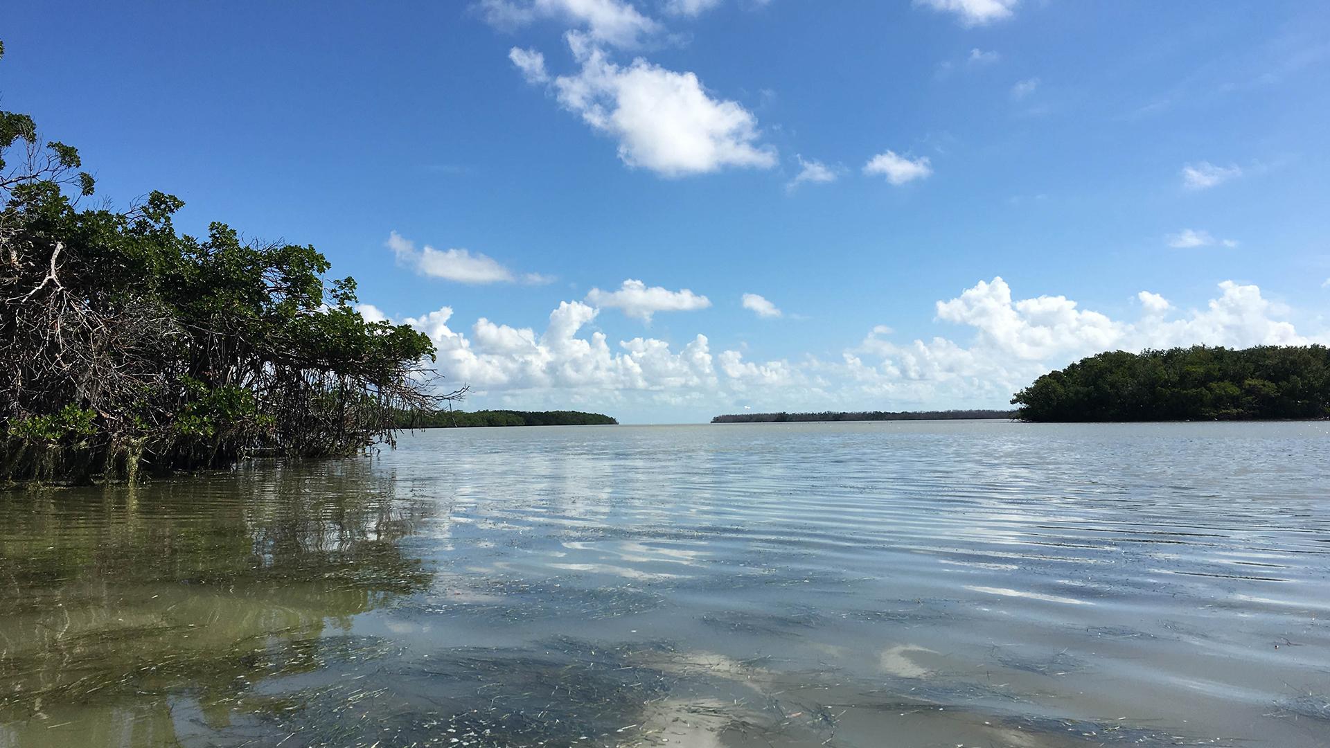 Flamingo-Campround-Everglades-National-Park-Airstream