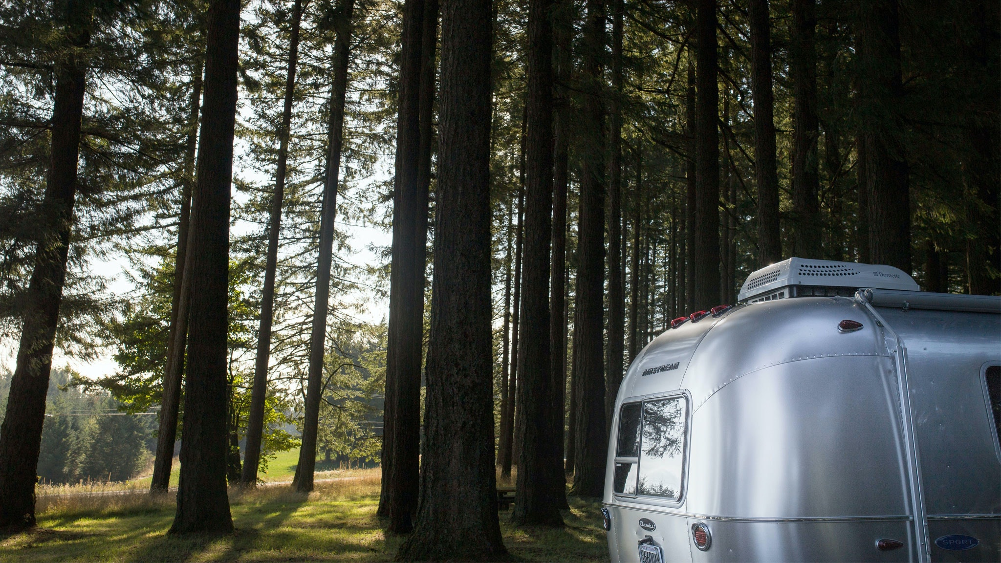 Airstream silver trailer sitting in a forest with trees