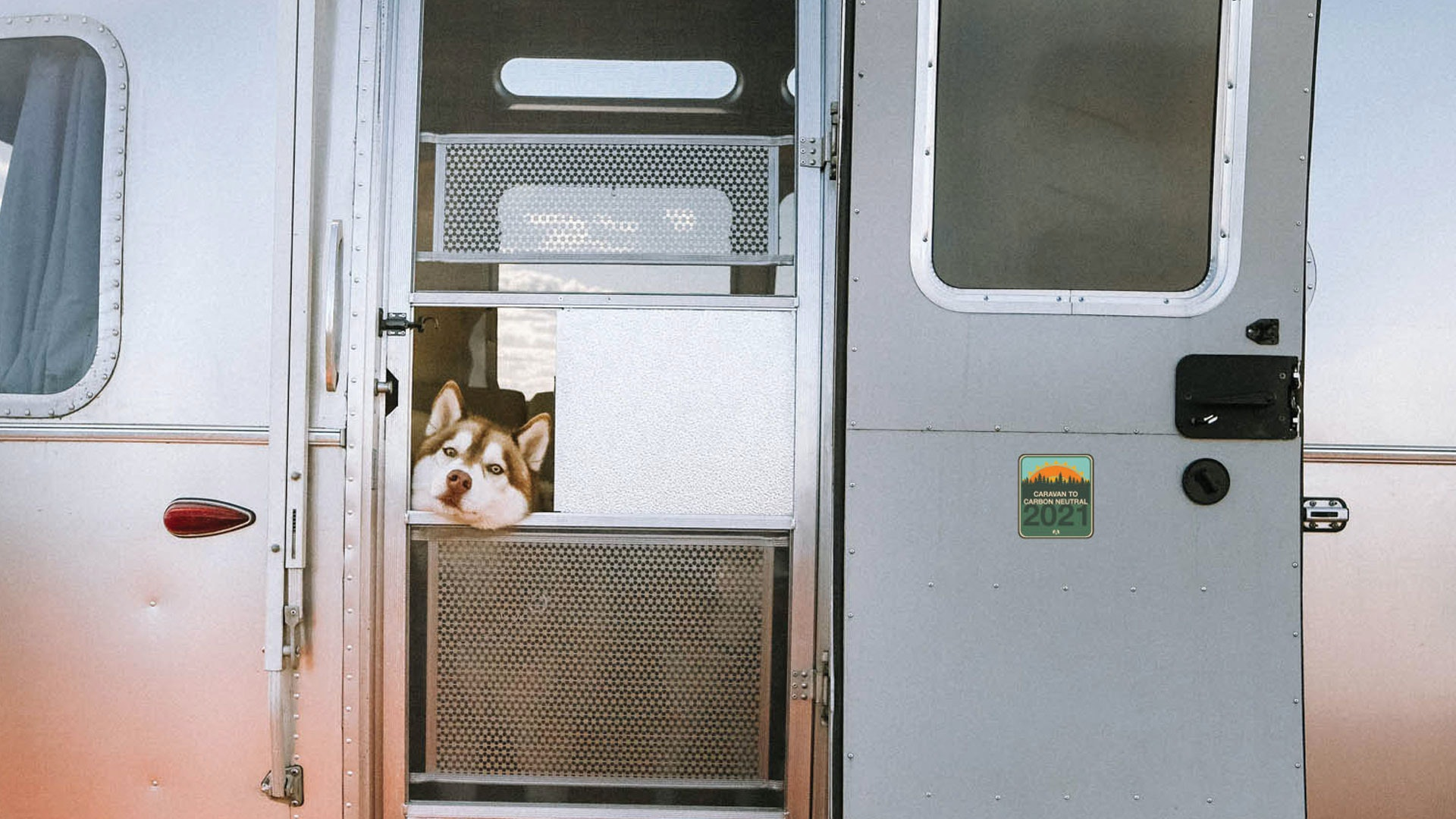 Dog with head out of window of Airstream