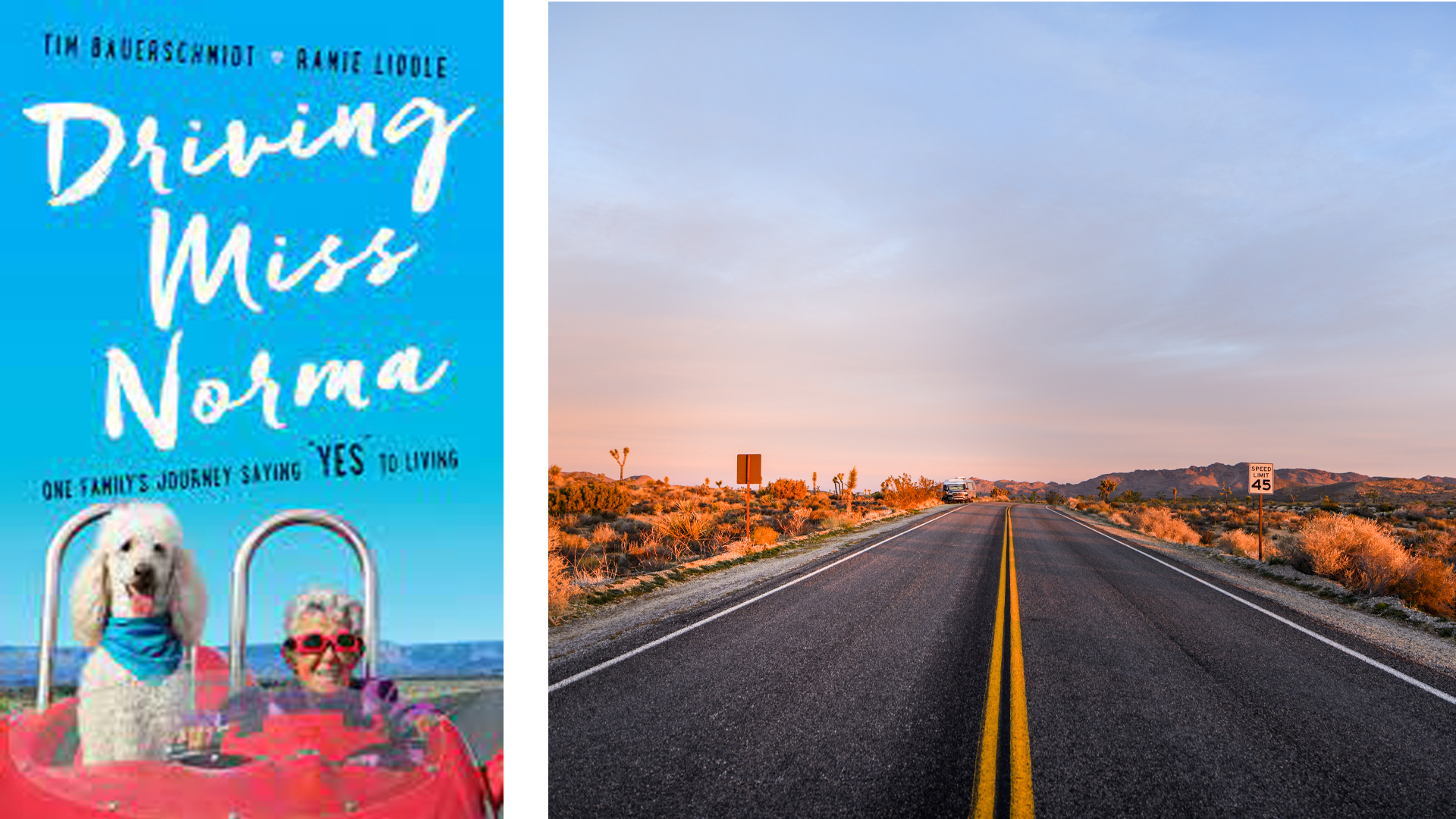 Driving Miss Norma book cover and road during sunset