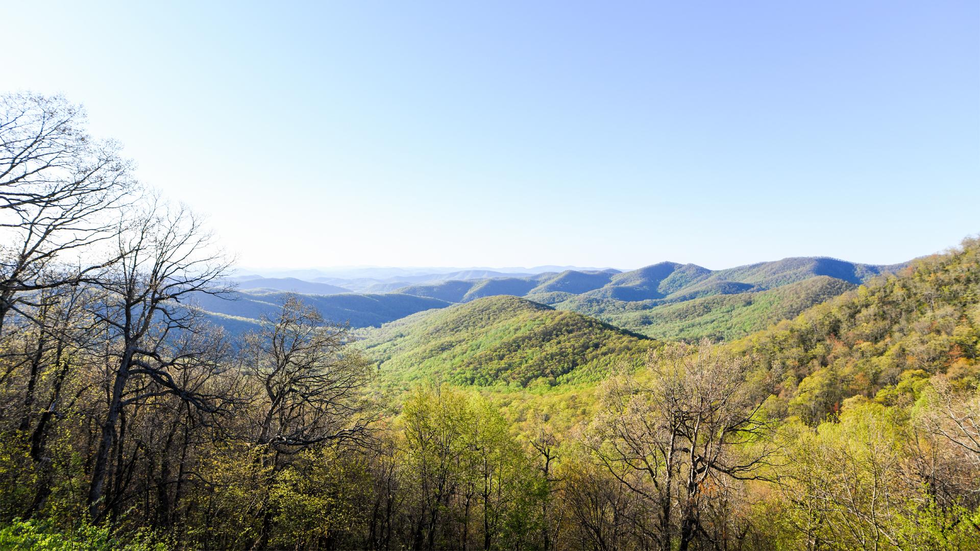 NC-Smoky-Mountains