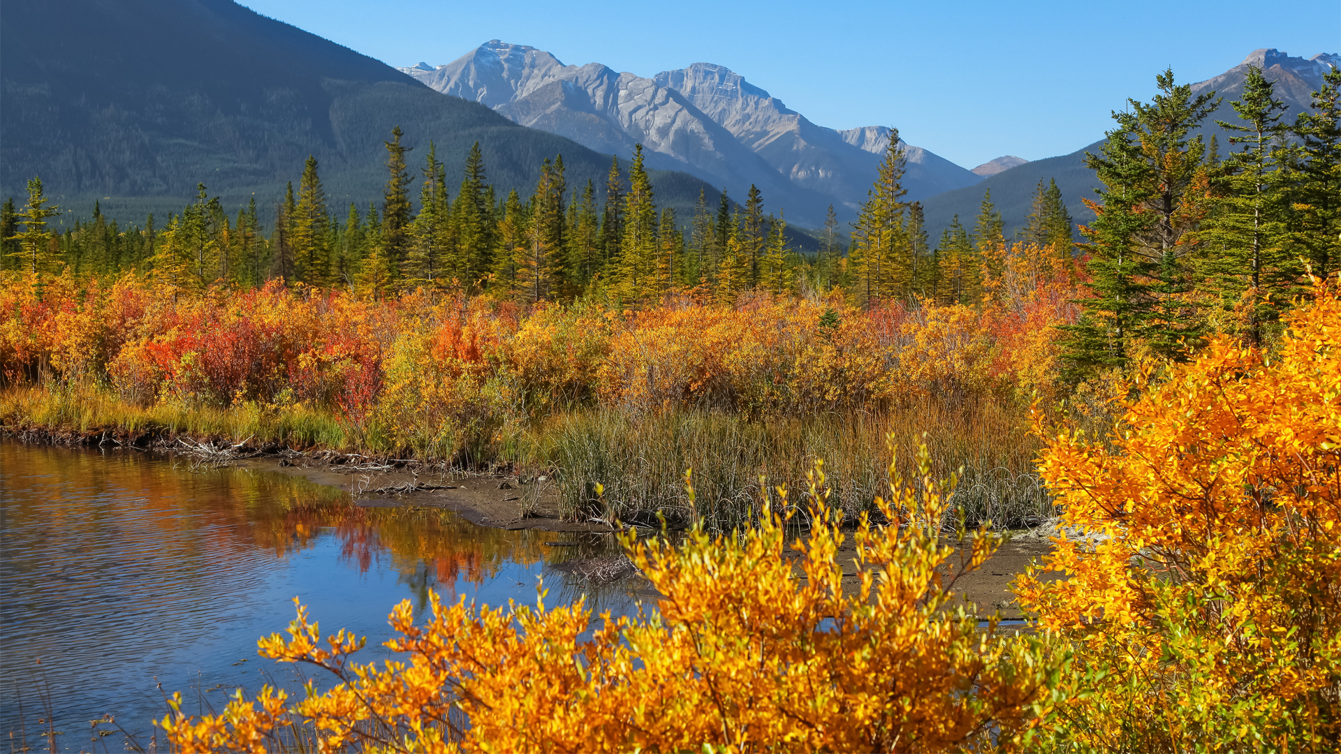 Rocky-Mountains-Fall